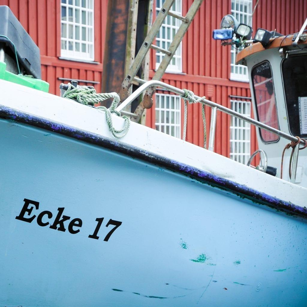 ECK-29